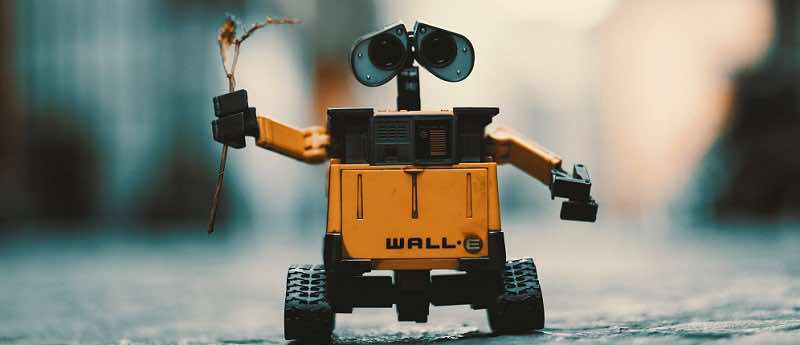 Wall-E holding a flower